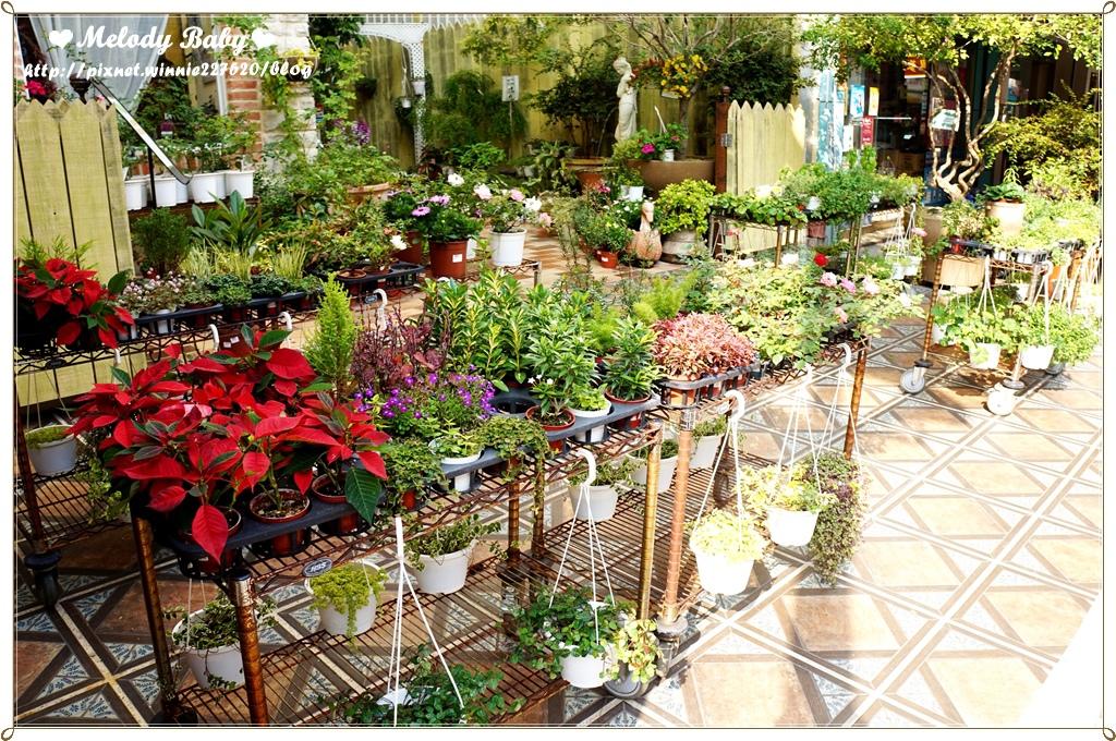 Vanessa's Garden 凡妮莎花園 (45).JPG