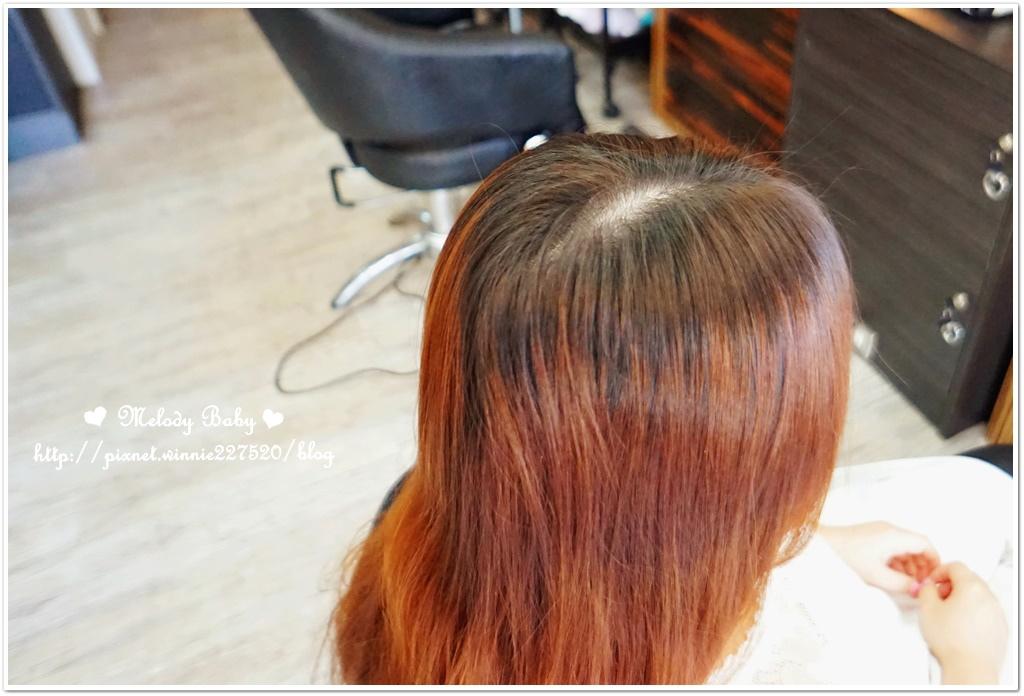 VS Hair (5).JPG