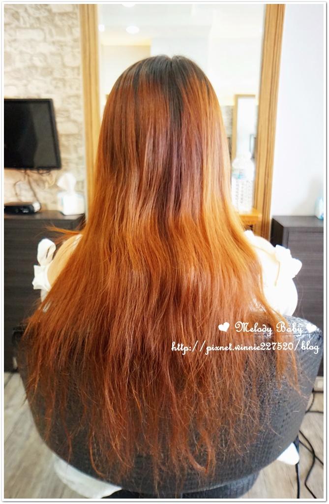 VS Hair (6).JPG