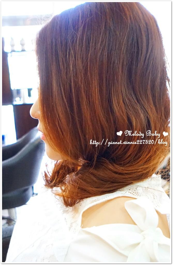 VS Hair (24).JPG