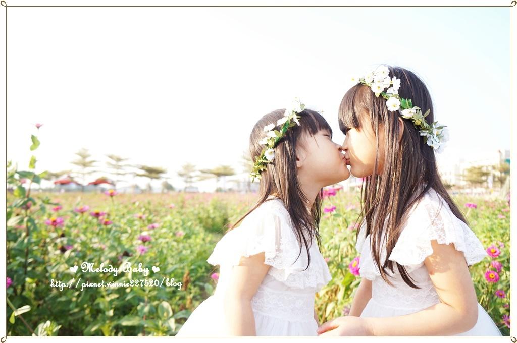 橋頭花海 (11).JPG