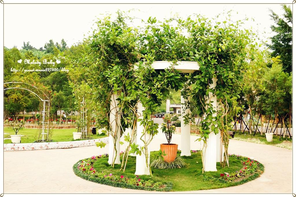 蘿莎玫瑰莊園 (9).JPG