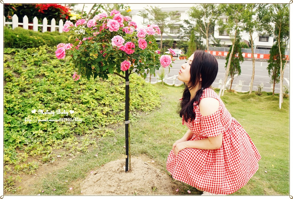 蘿莎玫瑰莊園 (19).JPG