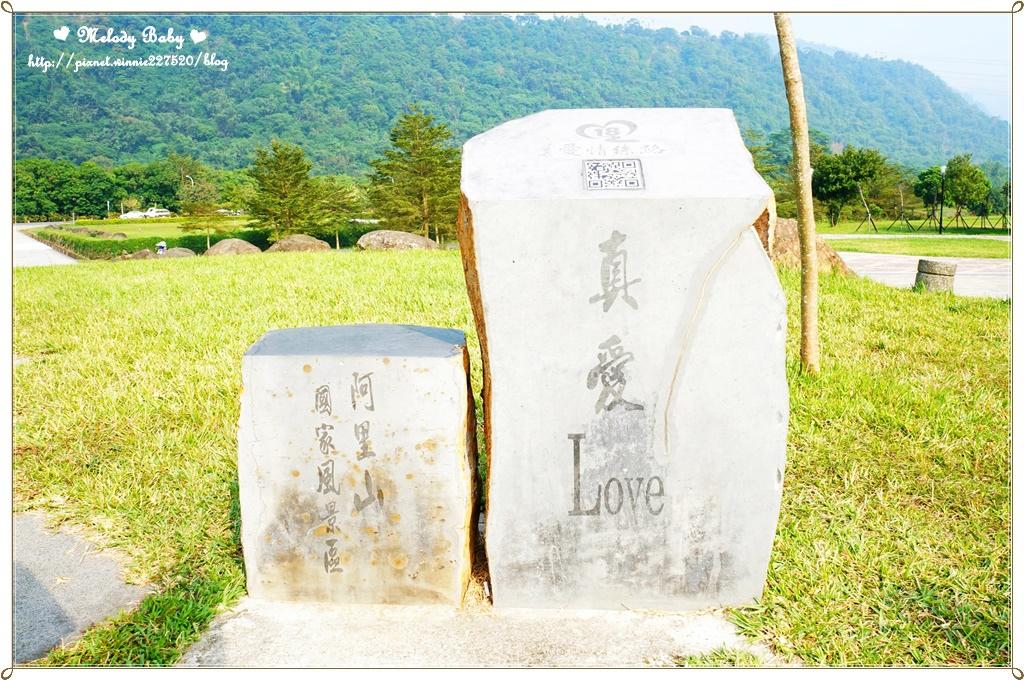 阿里山18號愛情絲路 (12).JPG