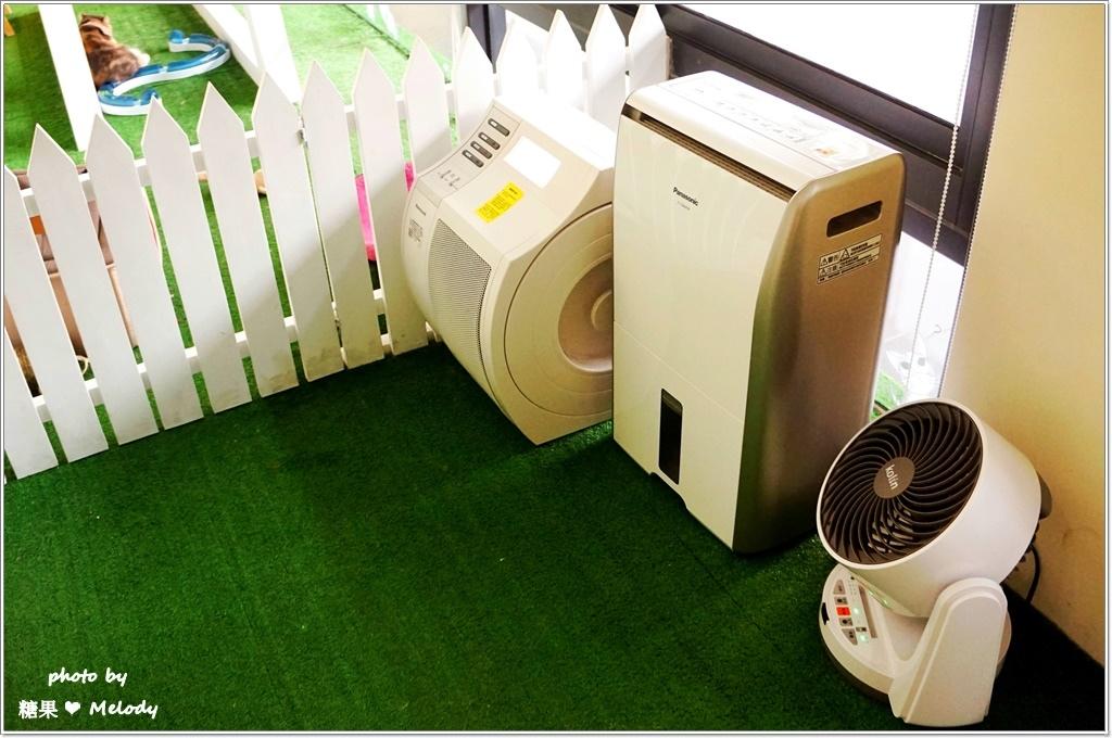 台中貓旅館-環境設備