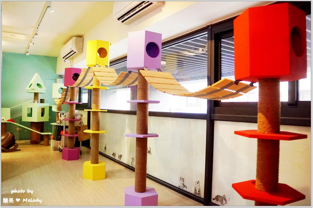 台中貓旅館-二樓遊戲區
