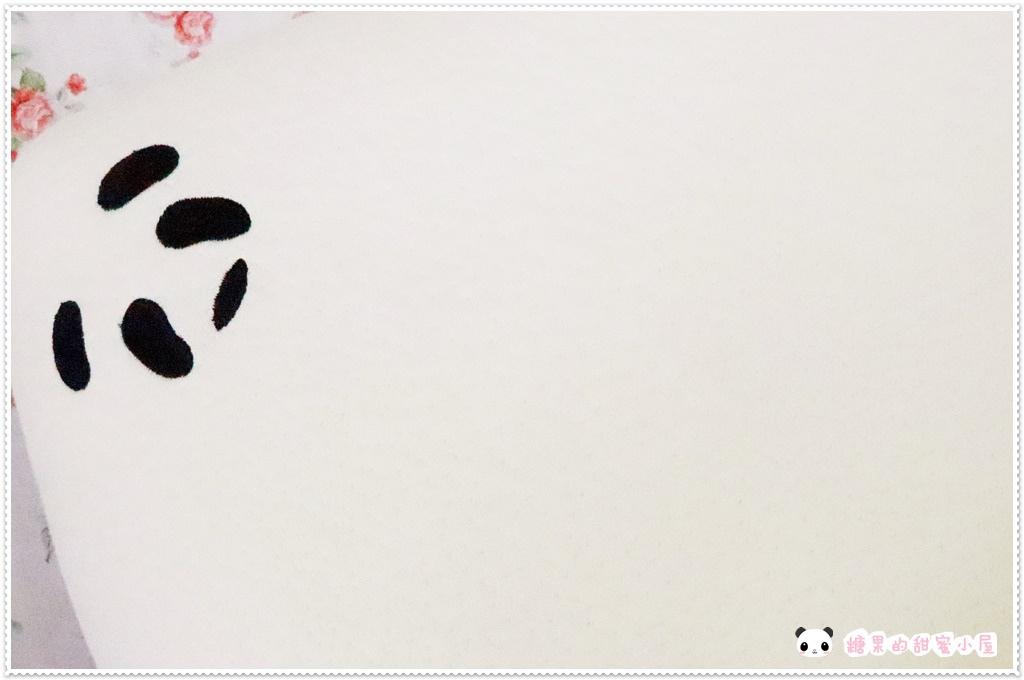Panda甜夢枕 (3).JPG