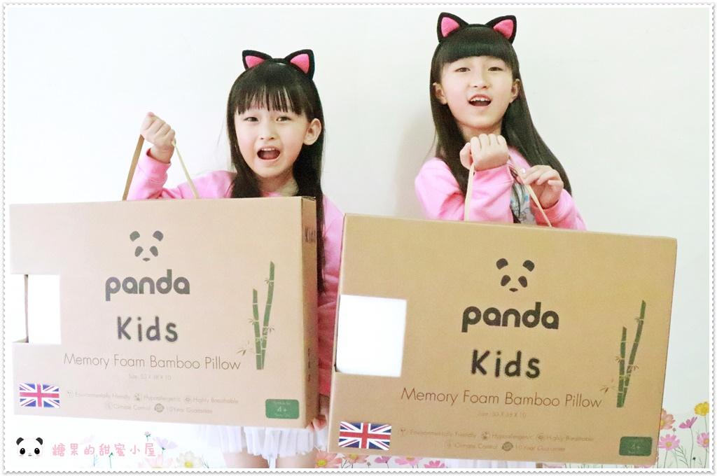 Panda甜夢枕 (12).JPG