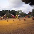 附近的兒童遊戲公園