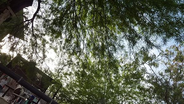 2010_05_15 0881.jpg