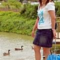 湖畔小鴨.jpg