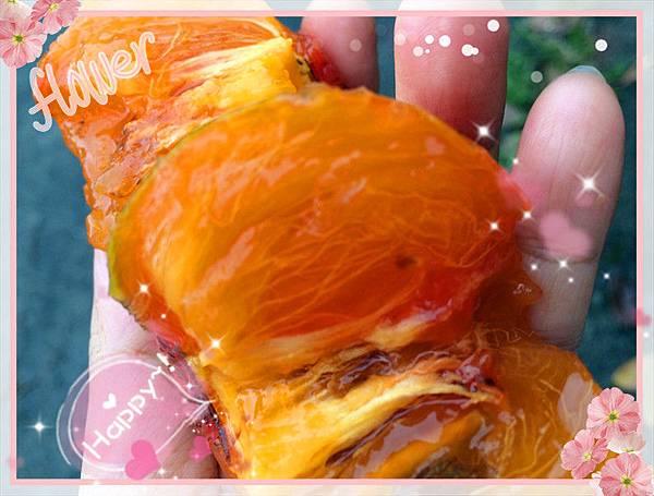 有機柿子6.jpg