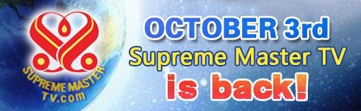 new_banner