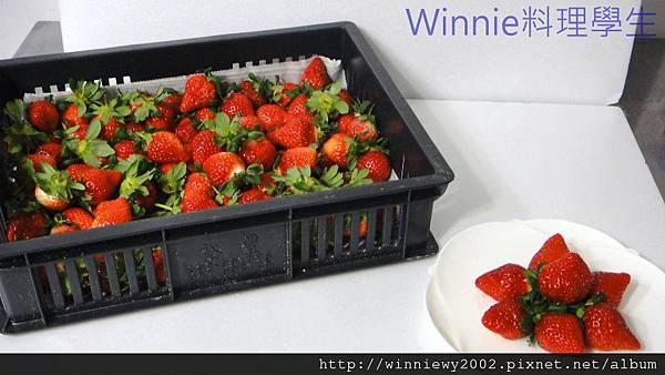 草莓上市1.jpg