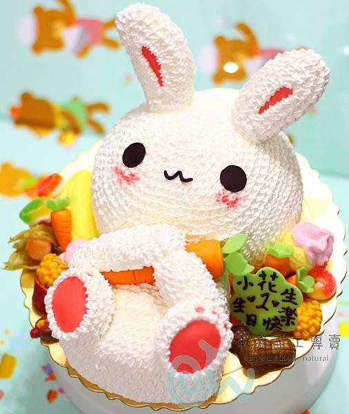 3D兔女版2-1A