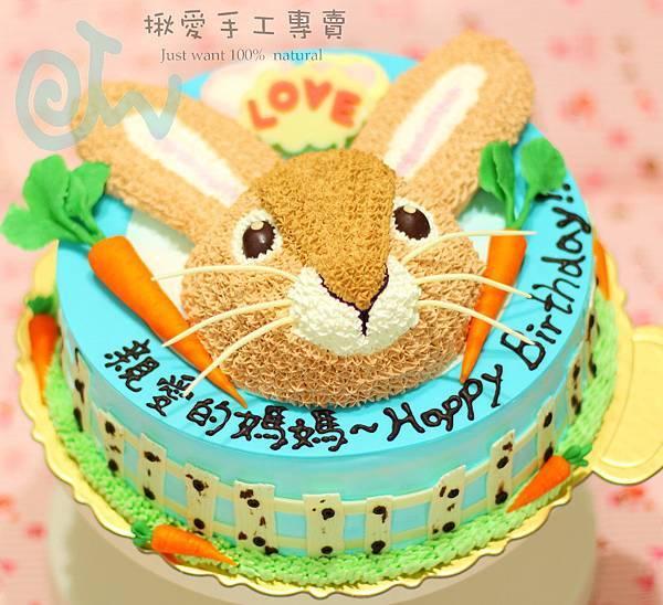 2D兔頭1-2a