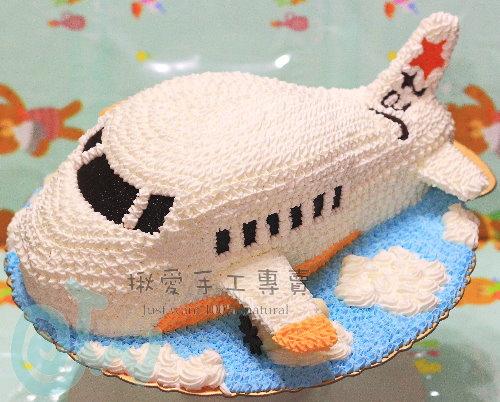 飛機(顏色及航空公司可自選)
