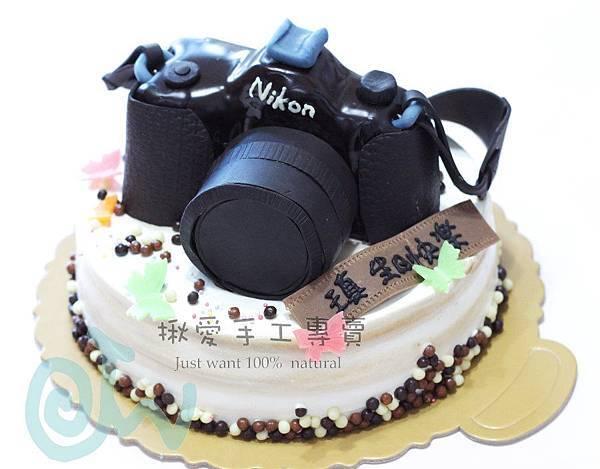 2DNikon相機造型20131114A.jpg