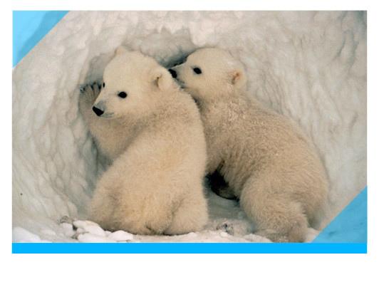1217830025_北極熊.jpg