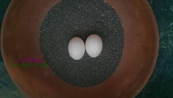 egg+ (3).jpg