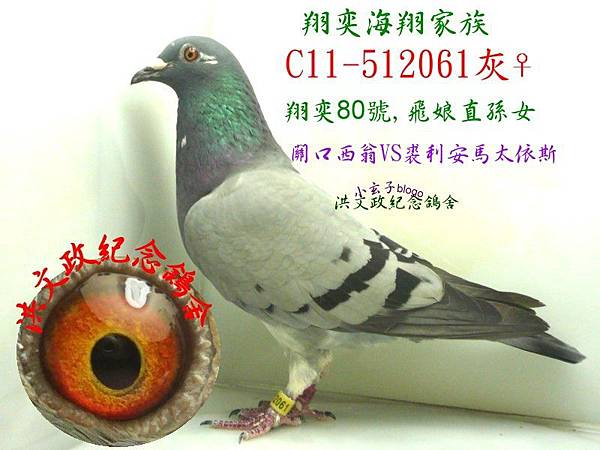 512061