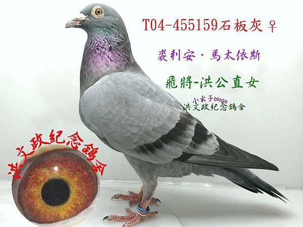 455159