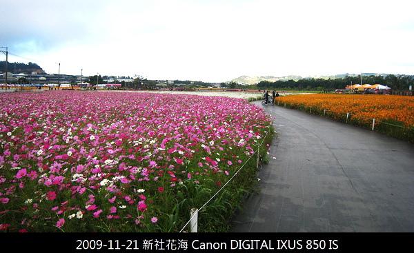 IMG_2484.JPG