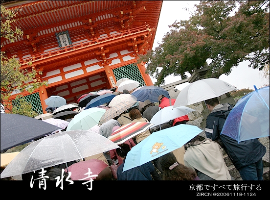 滿滿的都是雨傘