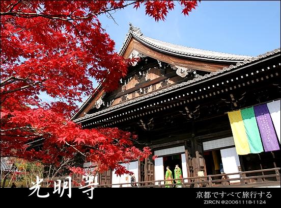 紅楓藍天光明寺