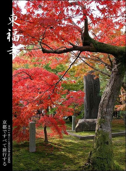 東福寺庭院一隅