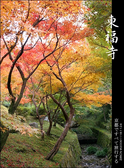 東福寺一隅
