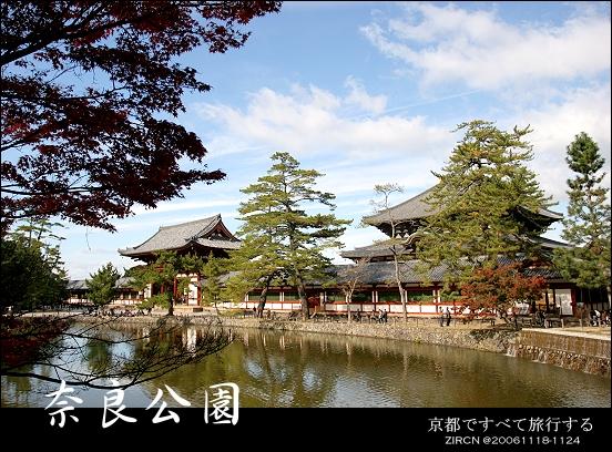 從奈良公園往東大寺望
