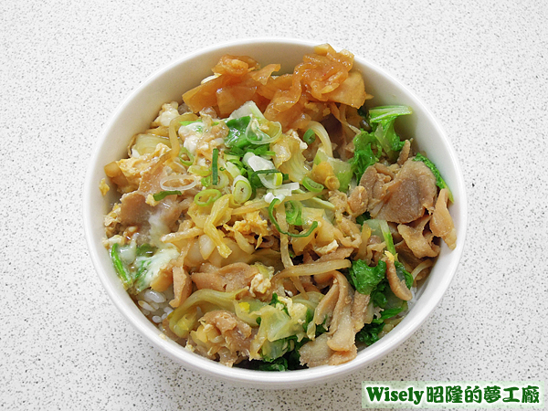 日式雞肉蓋飯