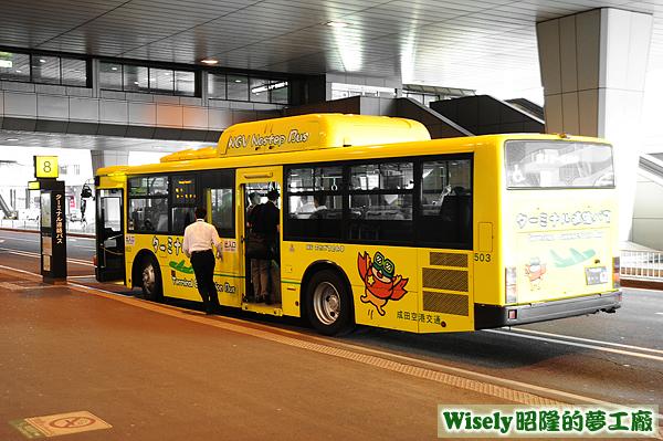 NGV Nostep Bus