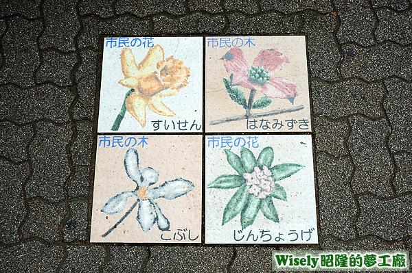 市民の花(すいせん/じんちょうげ)、市民の木(はなみずき/こぶし)