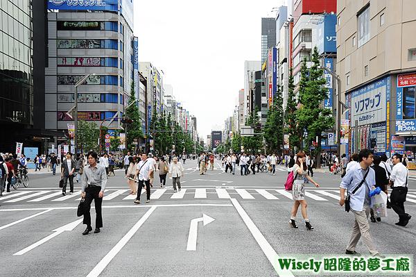 秋葉原街道