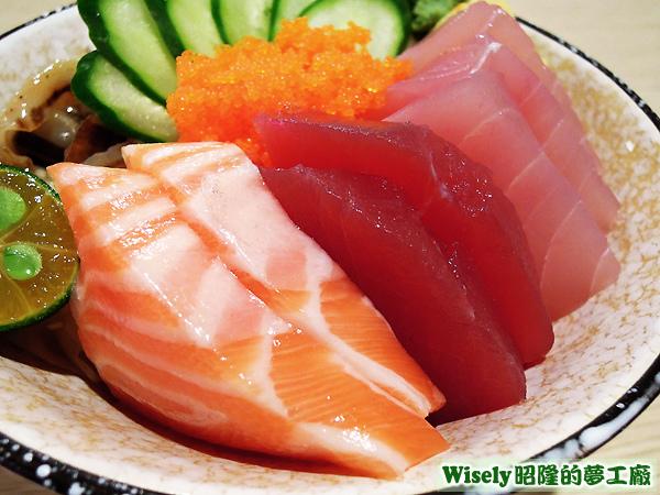 鮭魚、鮪魚、旗魚