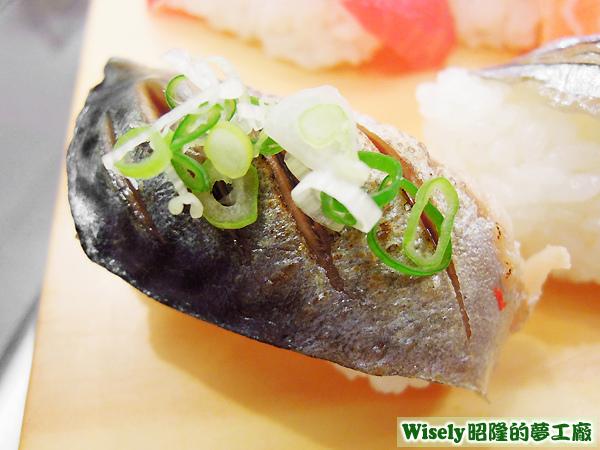 青花魚握壽司