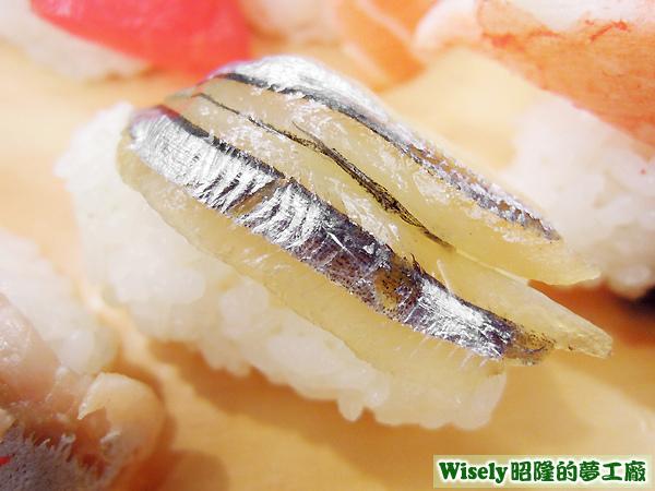 丁香魚握壽司