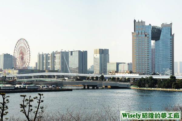 東京お台場 パレットタウン大観覧車(摩天輪)