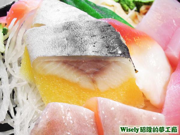 鯡魚生魚片