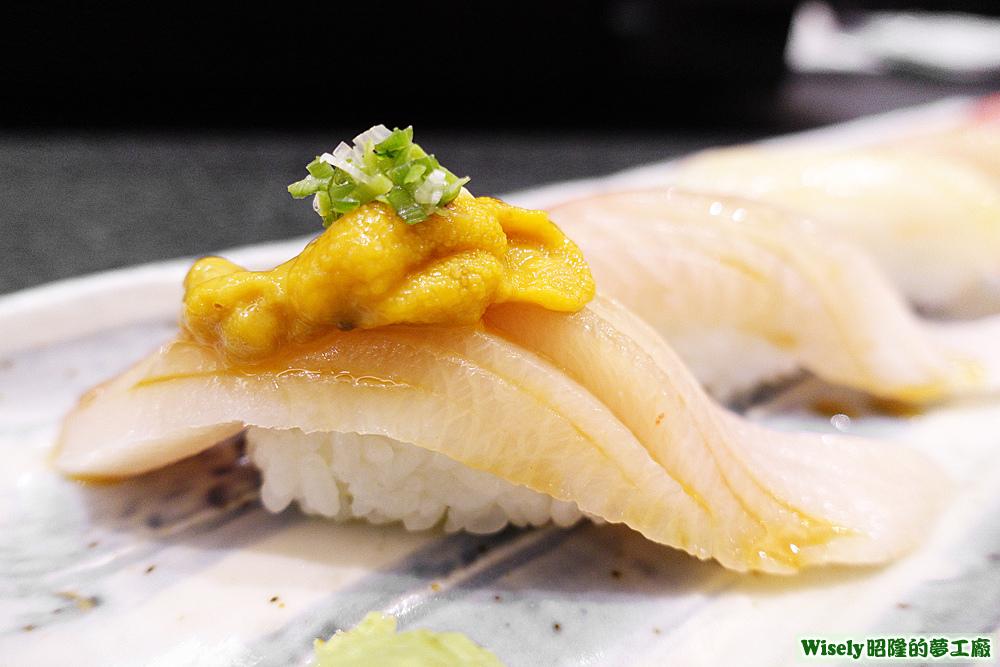 青魽(鰤魚)肚握壽司