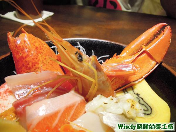 天使紅蝦、龍蝦