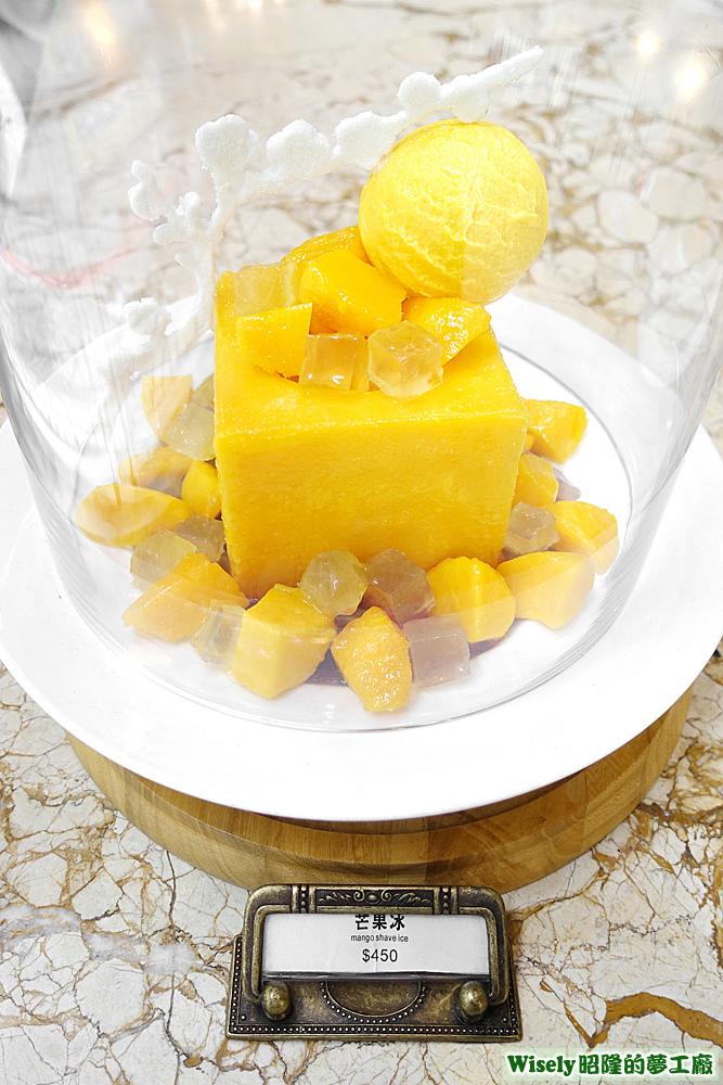 芒果冰模型