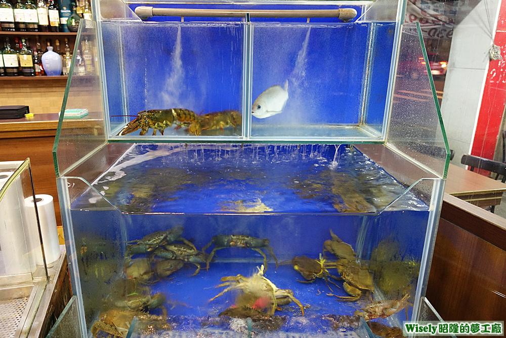 龍蝦、螃蟹