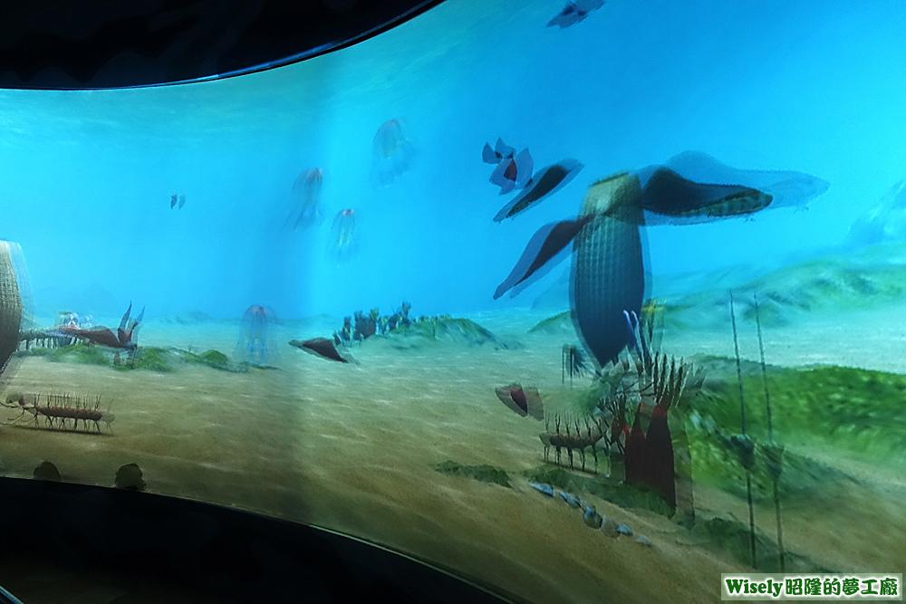 埃迪卡拉海洋花園(未戴眼鏡)