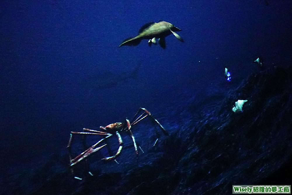 古代海洋生態