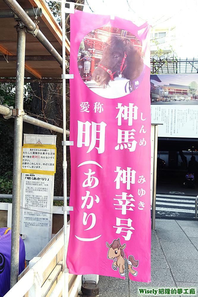 神馬・神幸号 愛称 明(あかり)