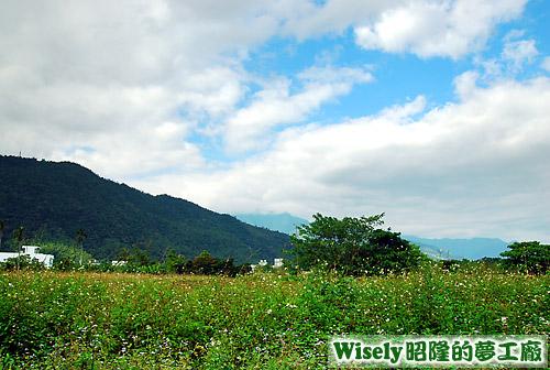 竹緹小舍後方景觀