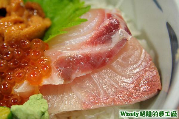 極品雙色丼:旗魚